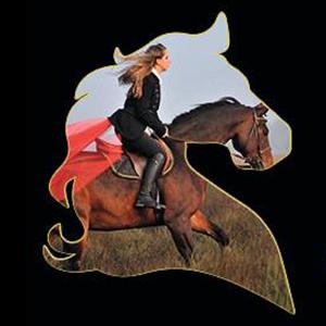 expo-cheval